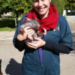 1.1 Me cuddling a baby wombat