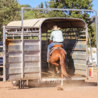 Blog 4 - Mat Broome loads his horse after just two sessions copy