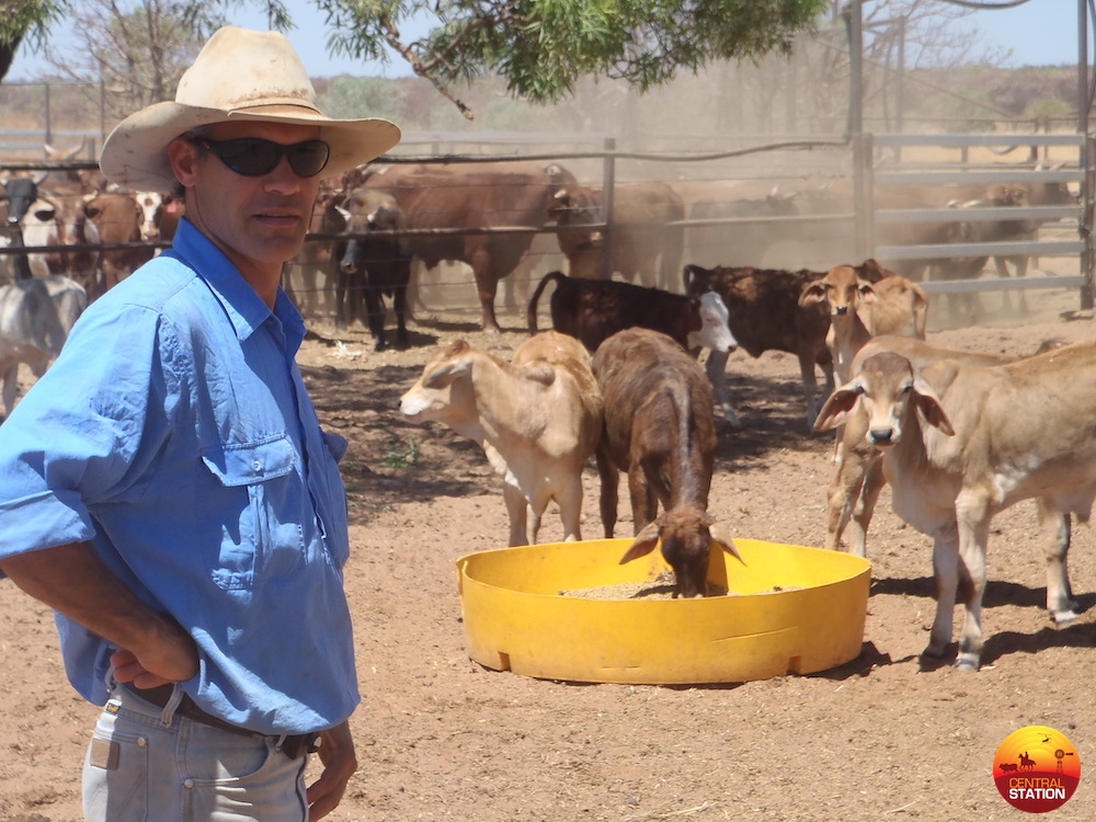 Helping weaners
