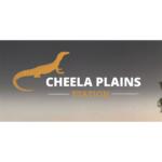 Cheela